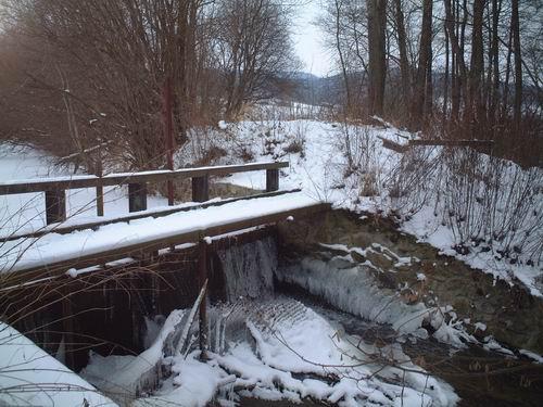 2005 - Okolí dolního rybníka